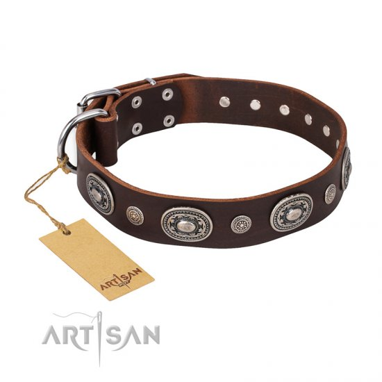 """Extra Pizzazz"" FDT Artisan Adorned Brown Leather Amstaff Collar"
