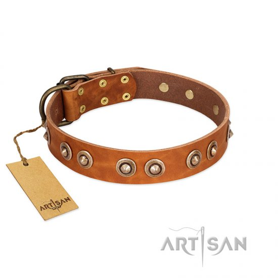 """Precious Relic"" FDT Artisan Tan Leather Amstaff Collar Adorned with Old Bronze Look Studs"