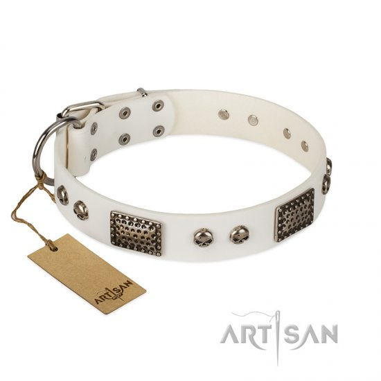 """Terrific Beauty"" FDT Artisan Beguiling White Leather Amstaff Collar"