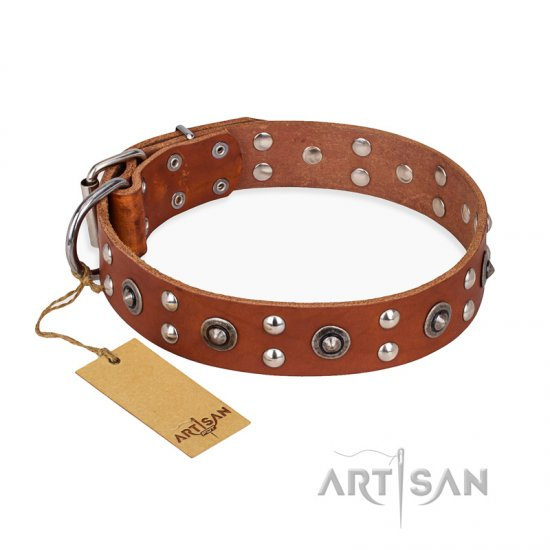 """Silver Elegance"" FDT Artisan Decorated Leather Amstaff Collar with Old Silver-Like Plated Studs and Cones"