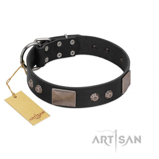 """Square Stars"" Modern FDT Artisan Black Leather Amstaff Collar with Square Plates and Studs"