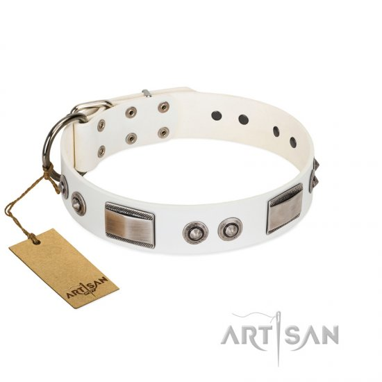 """Good-Luck Piece"" FDT Artisan White Amstaff Collar Adorned with Chrome Plated Studs and Plates"