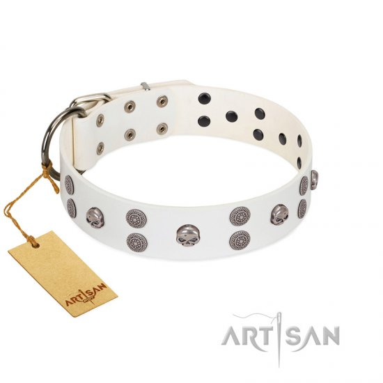 """Edgy Look"" FDT Artisan White Leather Amstaff Collar with Silver-like Skulls"
