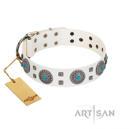 """Blue Sapphire"" Designer FDT Artisan White Leather Amstaff Collar with Round Plates and Square Studs"