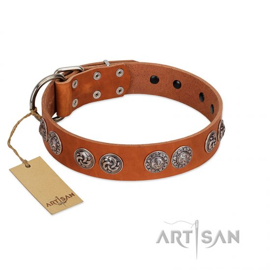 """Woofy Majesty"" FDT Artisan Tan Leather Amstaff Collar with Round Silver-like Plates"