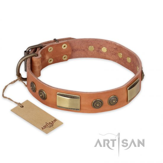 """Lost Desert"" FDT Artisan Leather Amstaff Collar with Brass Decorations"