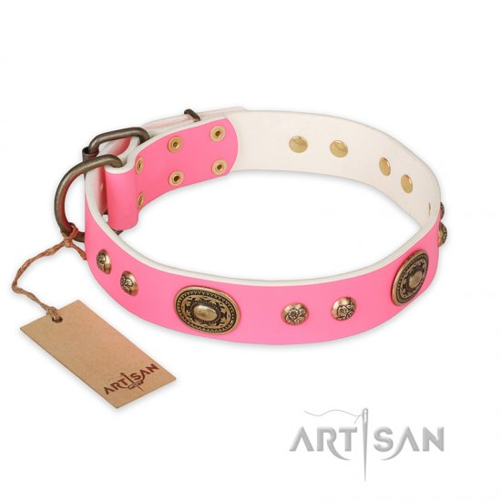 """Sensational Beauty"" FDT Artisan Pink Leather Amstaff Collar with Old Bronze Look Plates and Studs"