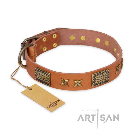 """Cosmic Traveller"" FDT Artisan Adorned Leather Amstaff Collar with Old Bronze-Plated Stars and Plates"