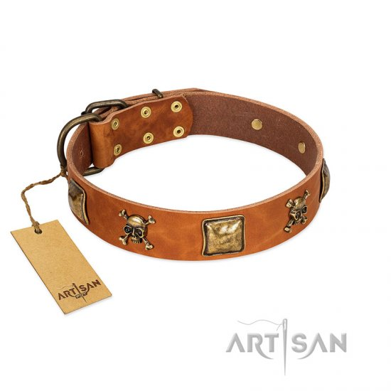 """Knights Templar"" FDT Artisan Tan Leather Amstaff Collar with Skulls and Crossbones Combined with Squares"