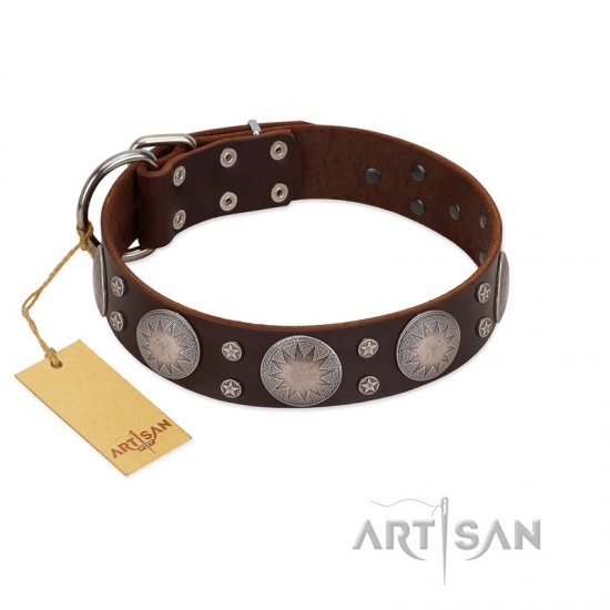"""Imperial Legate"" FDT Artisan Brown Leather Amstaff Collar with Big Round Plates"