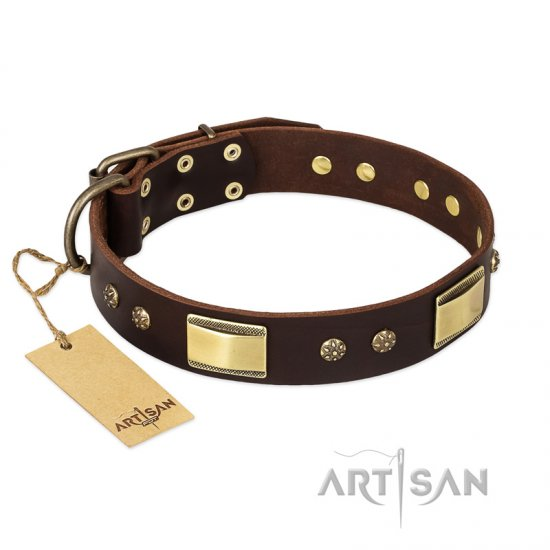 """Rich Fashion"" FDT Artisan Decorated Leather Amstaff Collar with Plates and Studs"