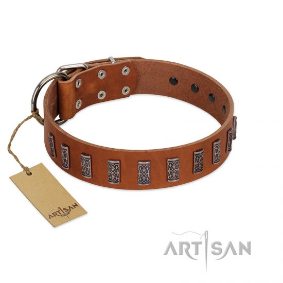 """Silver Century"" Fashionable FDT Artisan Tan Leather Amstaff Collar with Silver-Like Plates"