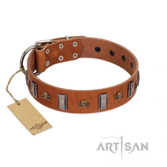 """Golden Crossbones"" Handmade FDT Artisan Tan Leather Amstaff Collar with Plates and Skulls"