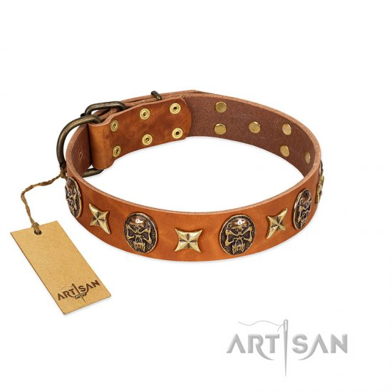 """Rockin' Doggie"" FDT Artisan Tan Leather Amstaff Collar Adorned with Stars and Skulls"