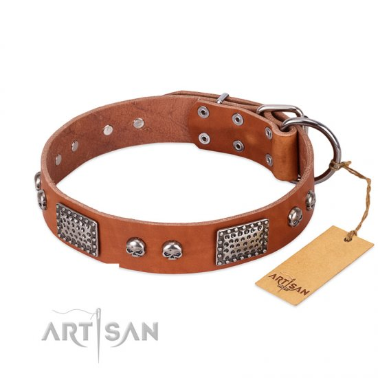 """Sparkling Skull"" FDT Artisan Tan Leather Amstaff Collar with Old Silver Look Plates and Skulls"