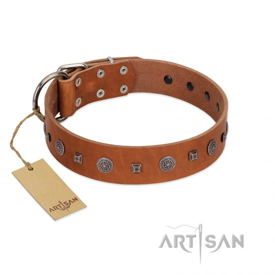 """Sweet Caramel"" Designer FDT Artisan Tan Leather Amstaff Collar"