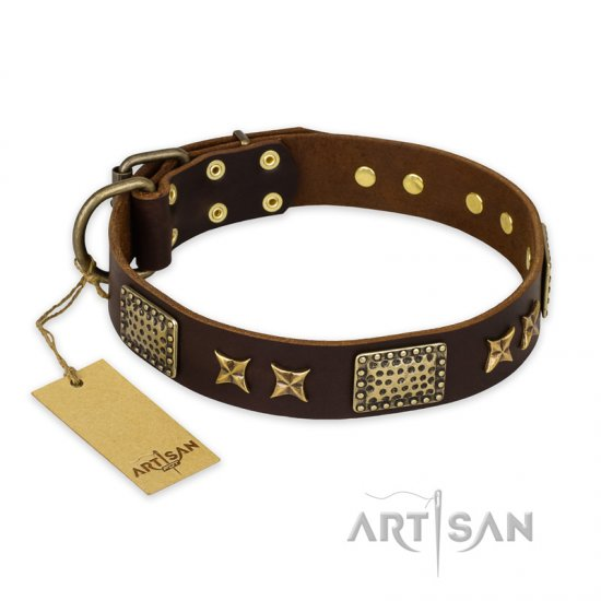 """Sparkling Bronze"" FDT Artisan Genuine Leather Amstaff Collar with Bronze Look Stars and Plates"