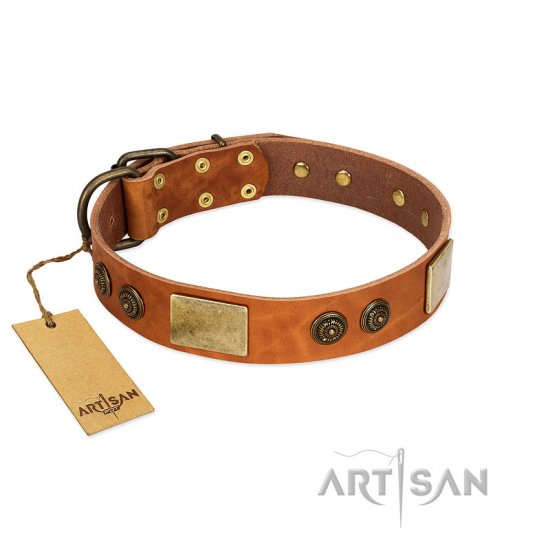 """Bronze Century"" FDT Artisan Tan Leather Amstaff Collar with Plates and Brooches with Cool Ornament"