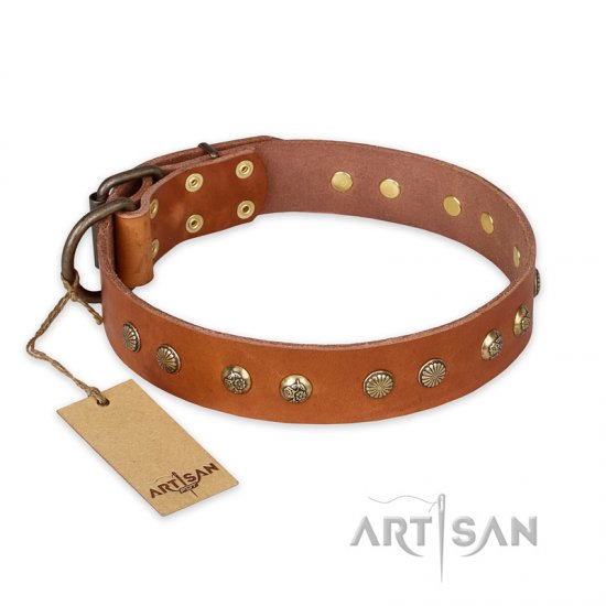 """Spring Flavor"" FDT Artisan Adorned Leather Amstaff Collar with Old Bronze-Plated Engraved Studs"