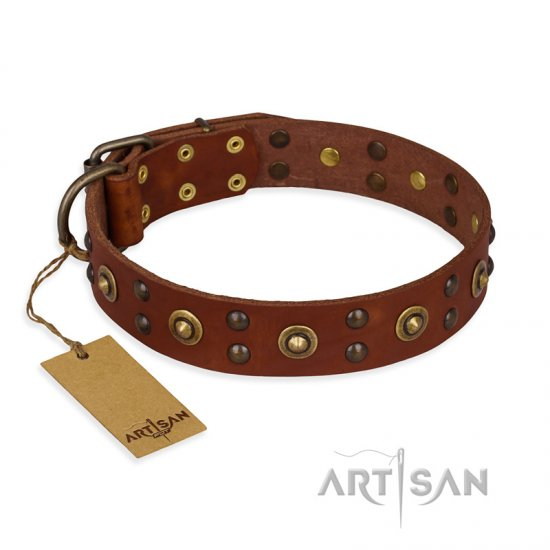 """Unfailing Charm"" FDT Artisan Studded Tan Leather Amstaff Collar"