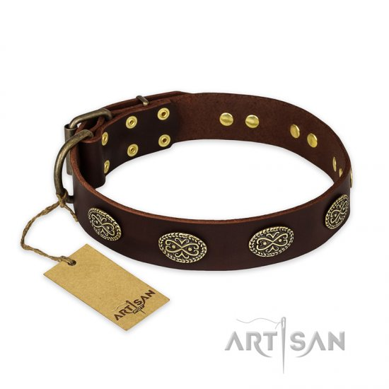 """Chocolate kiss"" FDT Artisan Leather Amstaff Collar with Old Bronze Look Oval Plates"