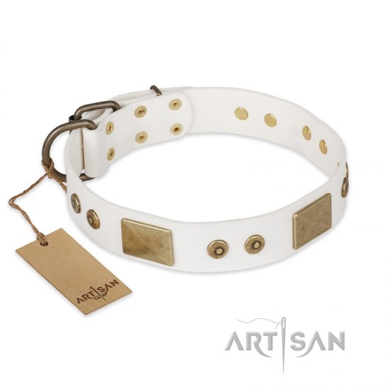 """Unforgettable Impress"" FDT Artisan Decorated Leather Amstaff Collar with Decorations"