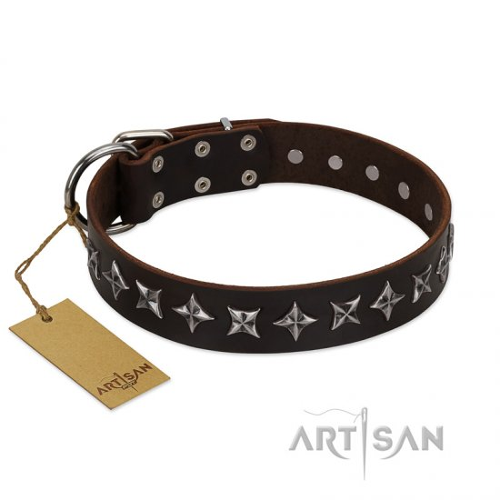 """Stars of Glory"" FDT Artisan Brown Leather Amstaff Collar for Comfortable Walking"
