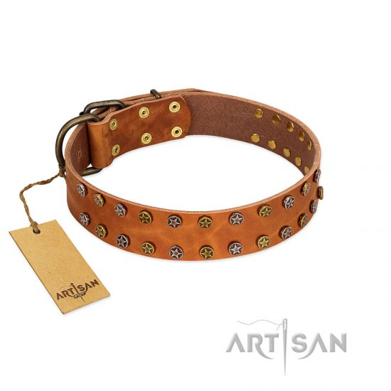 """Walk and Shine"" FDT Artisan Tan Leather Amstaff Collar with Antiqued Studs"