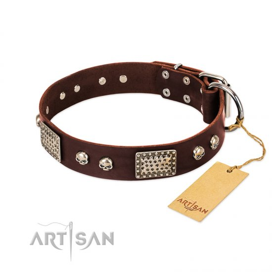 """Pirate Skull"" FDT Artisan Brown Leather Amstaff Collar with Old Silver Look Plates and Skulls"