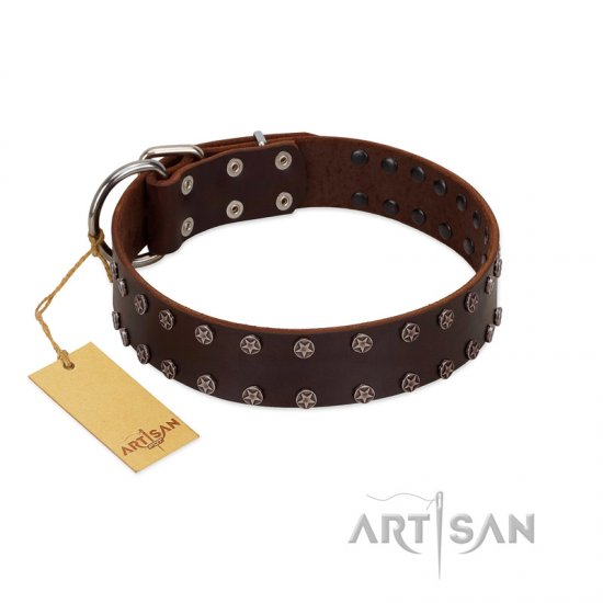 """Star Party"" Handmade FDT Artisan Brown Leather Amstaff Collar with Silver-Like Studs"