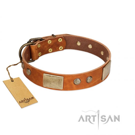 """Ancient Treasures"" FDT Artisan Tan Leather Amstaff Collar with Antiqued Plates and Studs"