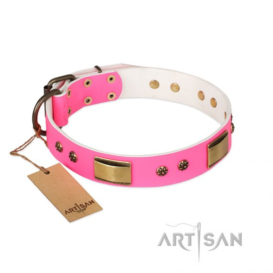 """Pink Daydream"" FDT Artisan Pink Leather Amstaff Collar with Old Bronze Look Plates and Studs"