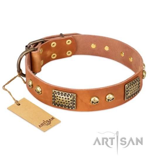 """Saucy Nature"" FDT Artisan Tan Leather Amstaff Collar with Old Bronze Look Plates and Skulls"