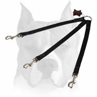 Amstaff Stitched Nylon Coupler Leash for 3 Dogs