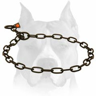 Amstaff Black Stainless Steel Chain Dog Collar