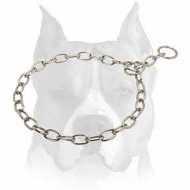 Chrome Plated Chain Dog Collar for Amstaff Training