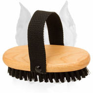 'Brush & Go' Bristle Amstaff Brush for Everyday Grooming