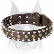 Amstaff Leather Dog Collar with Half-Ball Studs and Pyramids