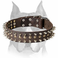 Amstaff Leather Dog Collar with Spikes and Half-Ball Studs