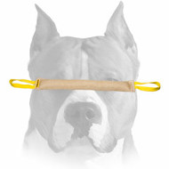 Amstaff Young Dog Bite Tug for Training and Improving Bite Skills