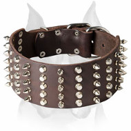 Amstaff Impressive Extra Wide Leather Dog Collar with Decorations