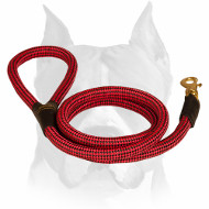 Strong and Lightweight Nylon Cord Dog Leash for Amstaff Breed