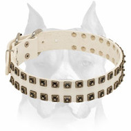 Amstaff Studded White Full Grain Leather Dog Collar