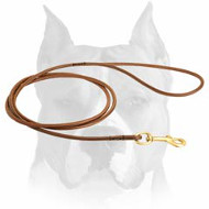 Amstaff Thin Leather Dog Leash for Dog Shows