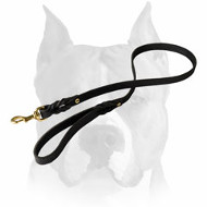 Amstaff High-Quality Braided Leather Dog Leash