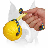 "Amstaff ""High Fly"" Foam Ball with Rope for Training"