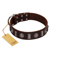 """Spiky Way"" FDT Artisan Brown Leather Amstaff Collar with Silver-Like Decorations"