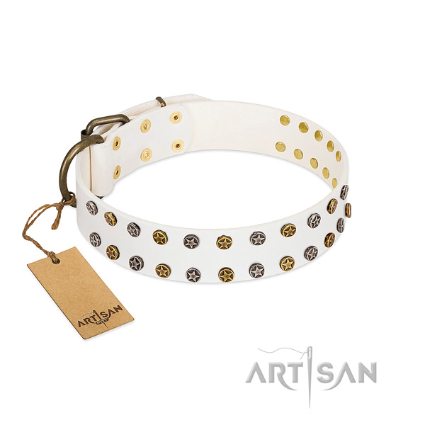 Trendy natural leather dog collar with reliable decorations