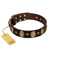"""Bronze Idol"" FDT Artisan Brown Leather Amstaff Collar with Eye-catching Ovals and Small Studs"