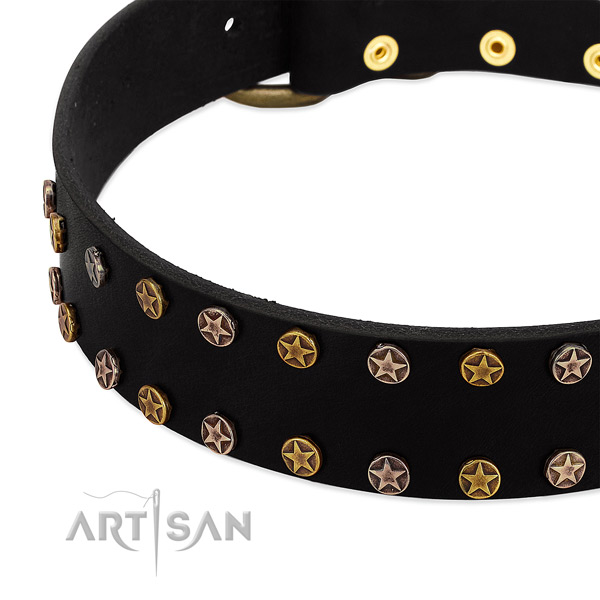 Unique adornments on natural leather collar for your four-legged friend